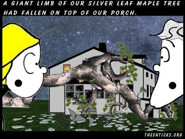Fallen tree mouse 6 The Shticks