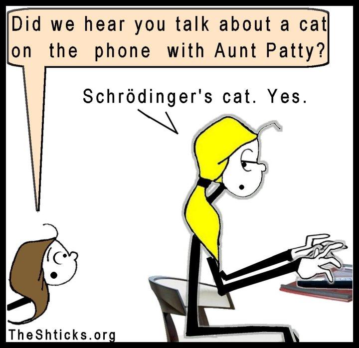 Schrödinger's cat The Shticks